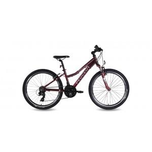 Peugeot JM243 Dağ Bisikleti 24 Jant